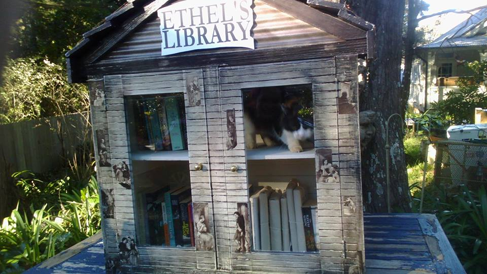 Ethel's Book Week Library