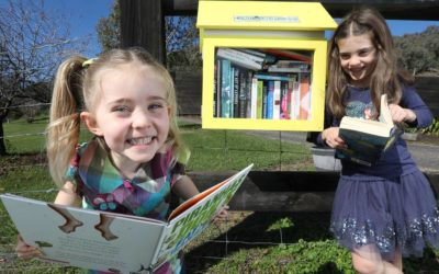 Neighbourhood street library a 'hoot' for little ones and literacy