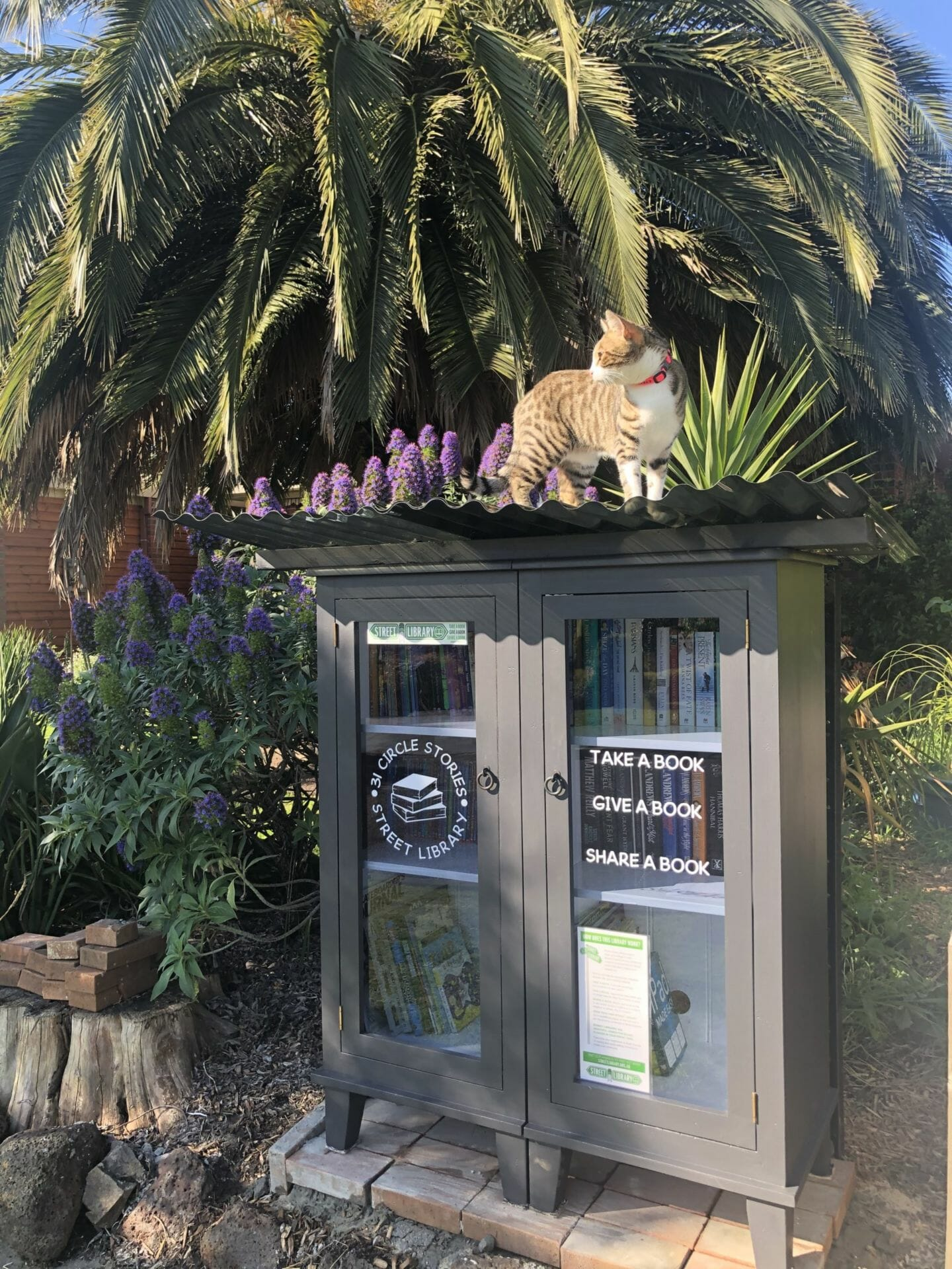 31 Circle Stories – Street Library